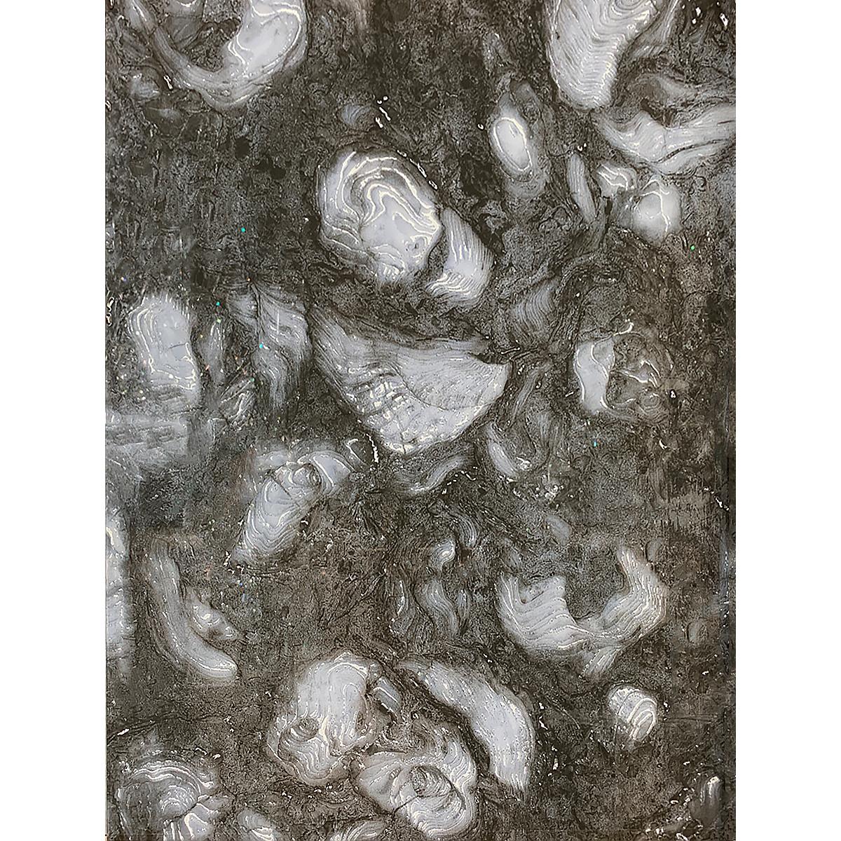 D00173 VERSUS COCOA PEARL