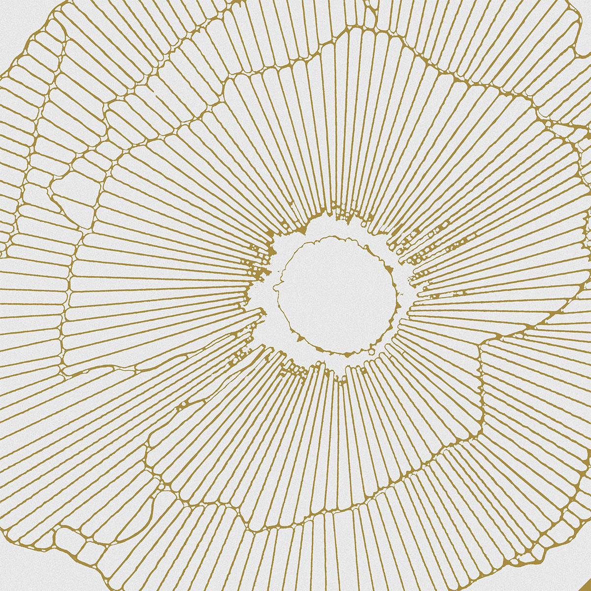 D00246 ART DECO WHITE SPRITZ