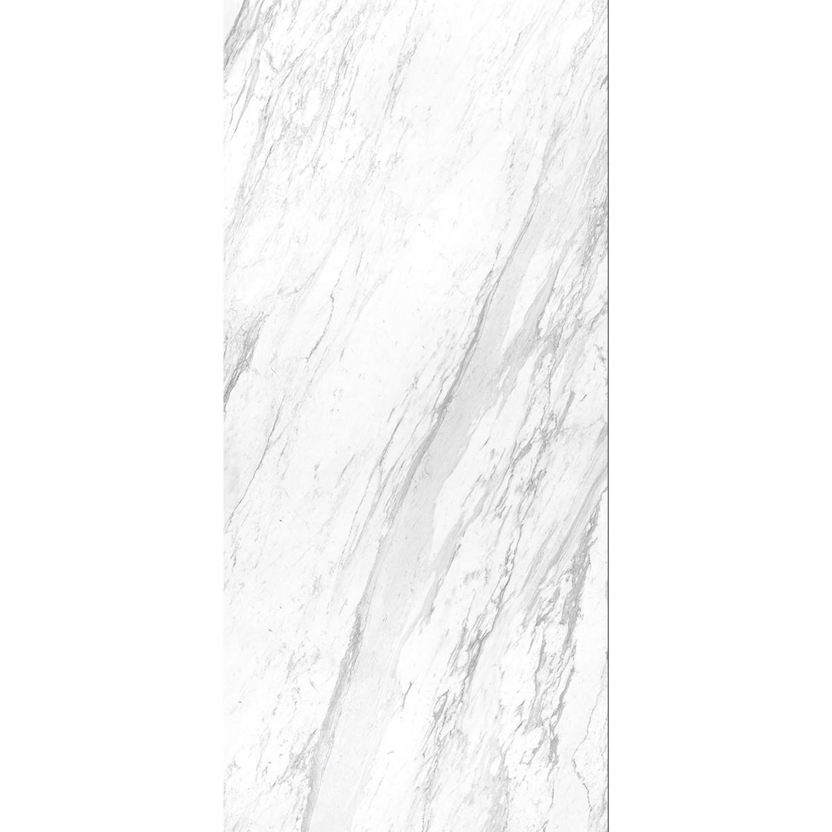 ELEGANCE WHITE POL BL A 663 WEB