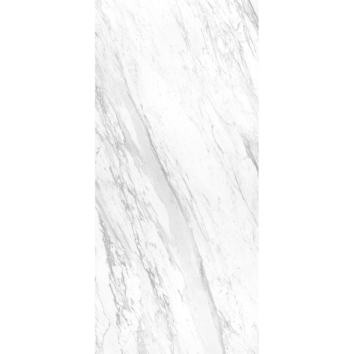 ELEGANCE WHITE POL BL B 663 WEB