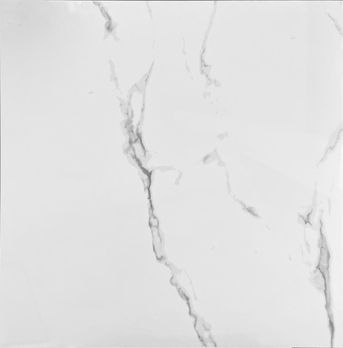 T10955 DT ARTIC WHITE 24X24 P1