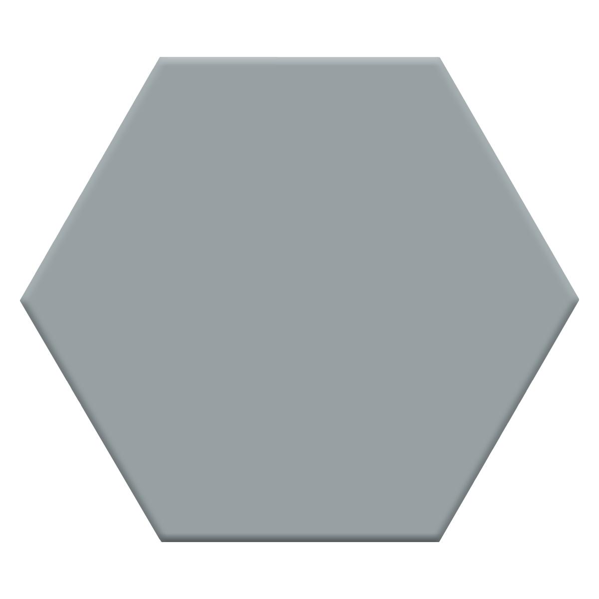 H00002 HEXAGON ASH P1